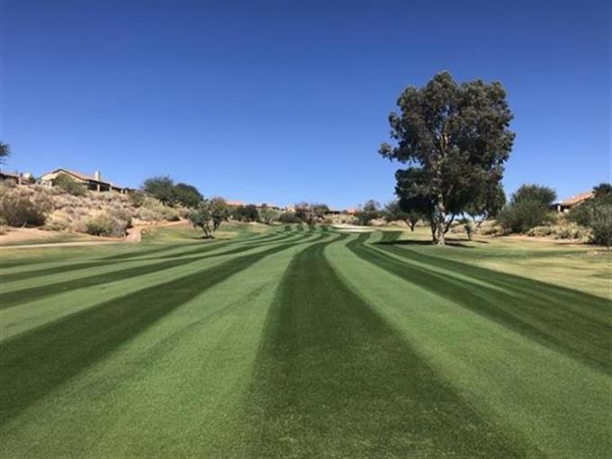 12_fwy_overseed